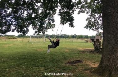 Puur Drenthe boomschommel