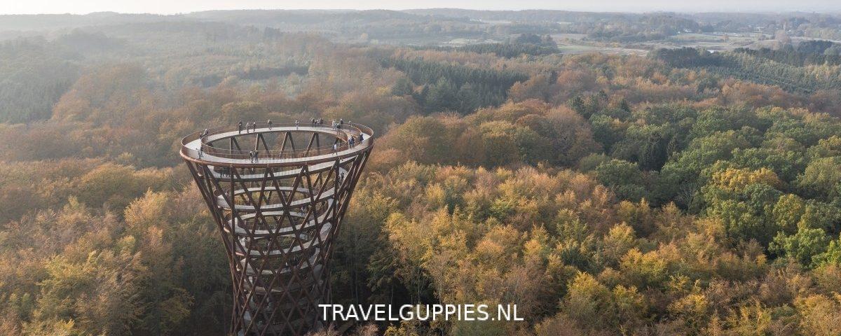Forest Tower Denemarken