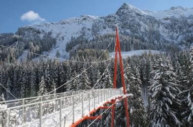 Boomkroonpad Baumwipfelweg Oostenrijk