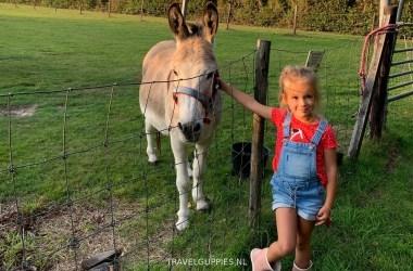 meisje met pony