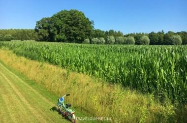 maisvelden Schoneveld